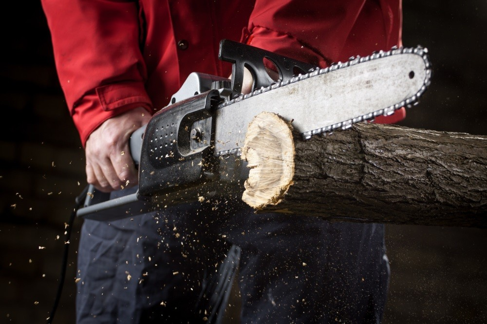 Best electric chainsaw 2018 a beginners guide on chainsaws greentooth Images