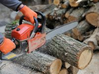 """WORX 16"""" Amp Electric Chainsaw Review: All You Need To Know!"""