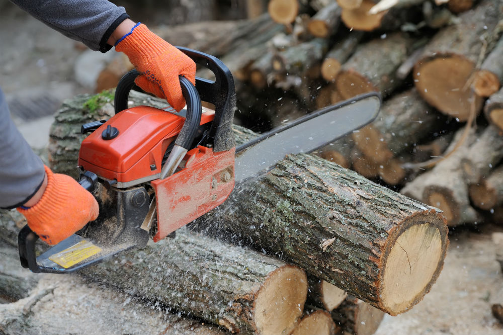 WORX 16 Amp Electric Chainsaw Review