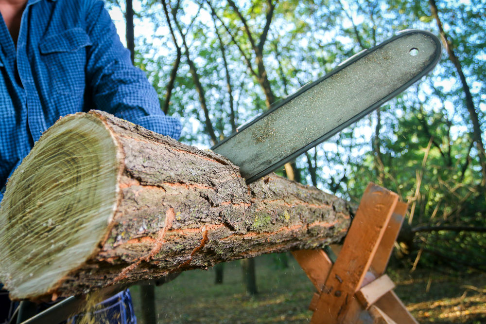 Which is The Best Cordless Chainsaw