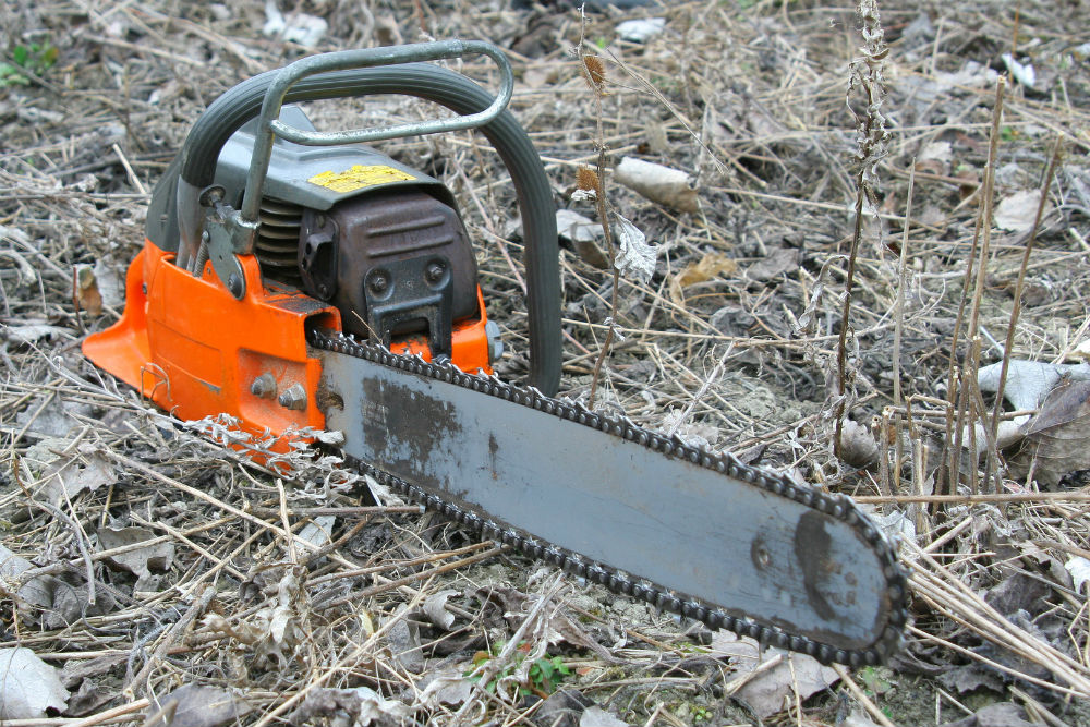 Chainsaw Manufacturers: Which One Is the Best Chainsaw For You?